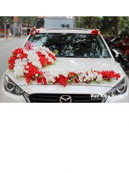 Bán hoa giả trang trí xe hoa sao biển đỏ hồ điệp thiết kế mới (1)