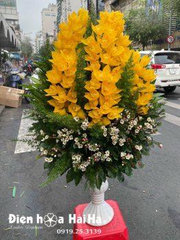 Bình hoa địa lan sang trọng