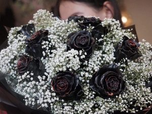 Ý nghĩa hoa hồng đen huyền bí