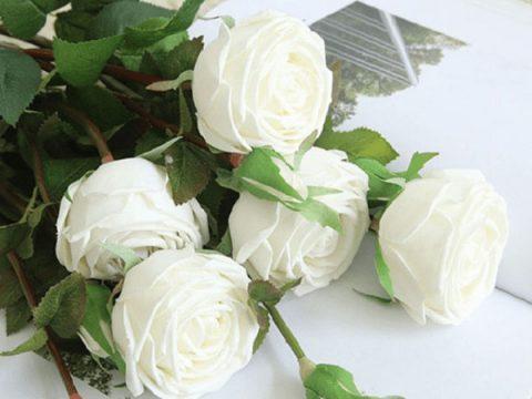 Ý nghĩa hoa hồng trắng – Loài hoa cao quý thuần khiết